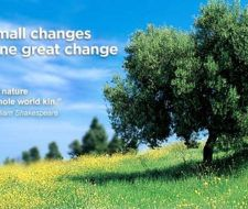 Yahoo Green, otro aporte a favor del medio ambiente