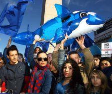 Gran Marcha Azul: solidaridad mundial con las ballenas