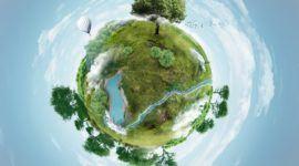 La fotosíntesis como biosíntesis y su importancia para la vida en la Tierra