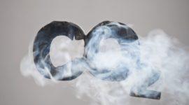 Importancia de pigmentos respiratorios en el transporte de oxígeno en los animales