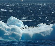 México construyó un iceberg para explicar el calentamiento global