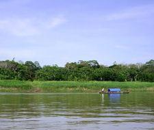 Noruega donará 17 millones de euros para salvar el Amazonas