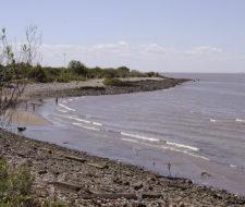 Segundo Censo de Contaminación Costera en Argentina