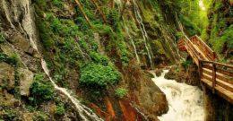 Los agentes geológicos externos y los procesos de meteorización