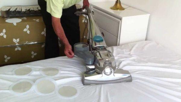 Picaduras de pulgas c mo reconocerlas s ntomas - Como acabar con las pulgas en casa ...