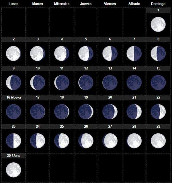 El calendario lunar Abril 2019 para huerto y el jardín - ElBlogVerde.com