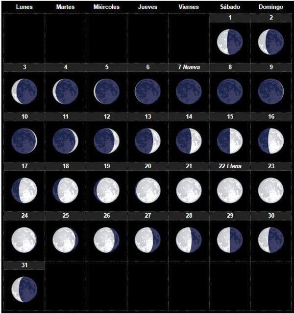 El calendario lunar agosto 2018 para huerto y el jard n for En que luna estamos