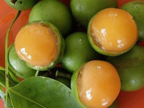 La huaya la fruta que cura el c ncer - Nacionalidad de puerto rico en ingles ...