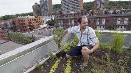 La casa más ecológica de América del Norte está en Montreal