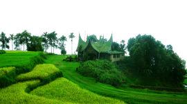 Las casas más ecológicas están en Discovery