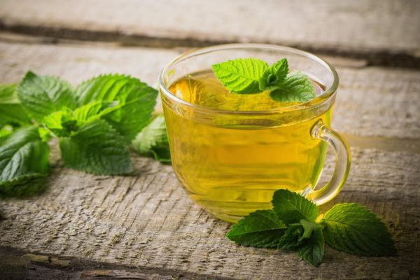 12 remedios naturales para una infeccion estomacal menta