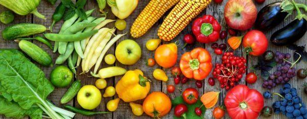 Alimentos ecologicos bio organicos diferencias