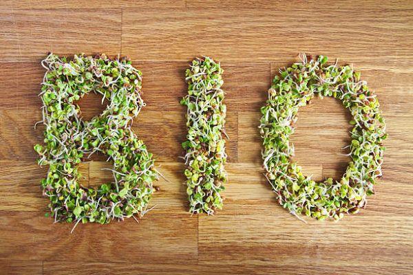 Que son alimentos bio