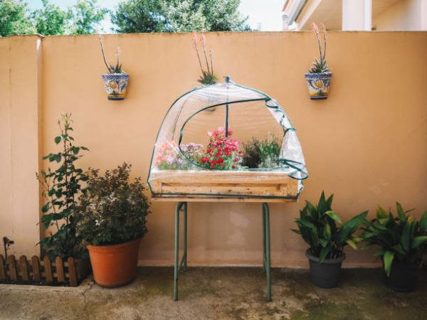 Cuanto cuesta un invernadero casero