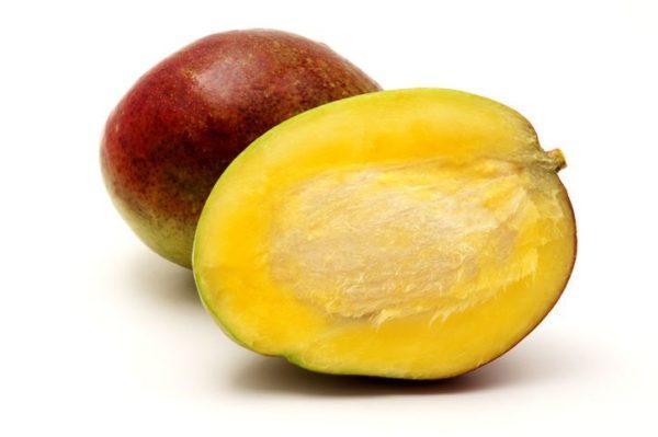 Como germinar semillas de mango