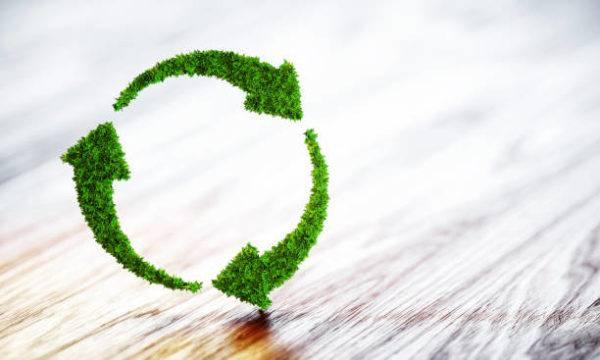Acciones medio ambiente recicla