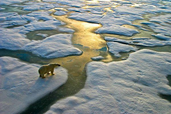 Consecuencias cambio climatico s