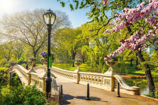 La primavera parques
