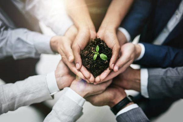 Cual es la relacion entre la ecologia el medio ambiente