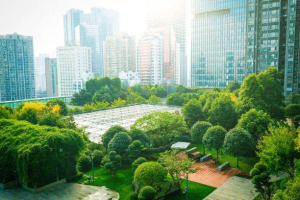 Las mejores practicas empresariales para cuidar el medio ambiente