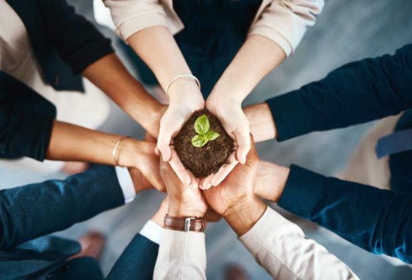 Las mejores practicas empresariales para cuidar medio ambiente