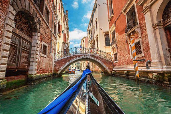 Venecia baja la contaminacion de los canales y surge vida