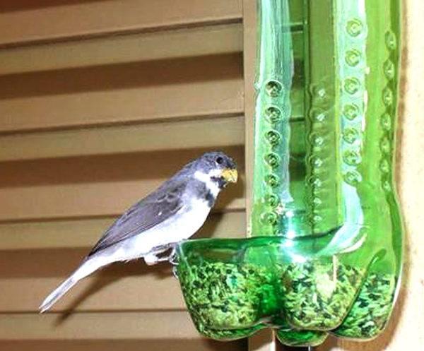 Ideas para reciclar botellas de plástico comedero pájaro