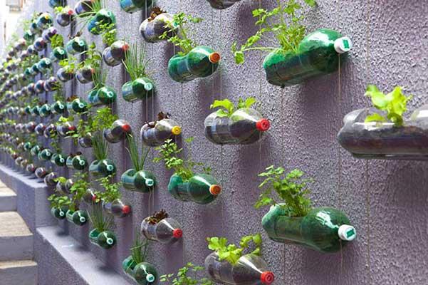 Ideas para reciclar botellas de plástico jardín vertical y horizontal