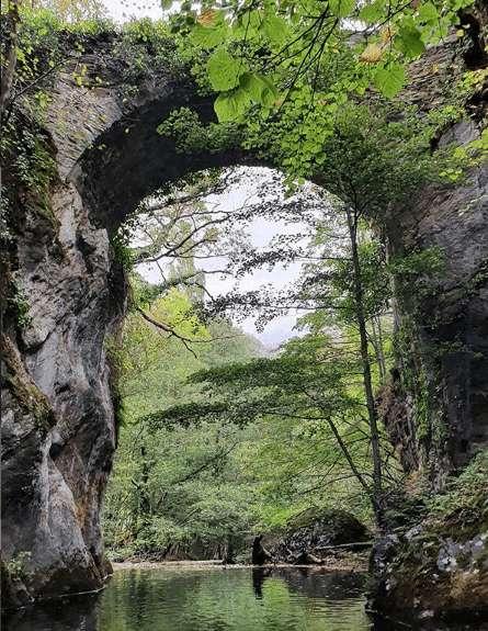 El Medio Ambiente naturaleza