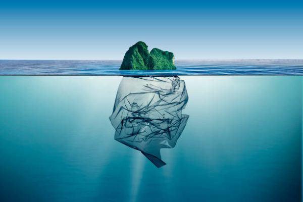 Cuales son los peores delitos contra medio ambiente