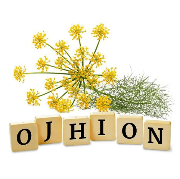 Las propiedades, los beneficios y los usos del hinojo flores