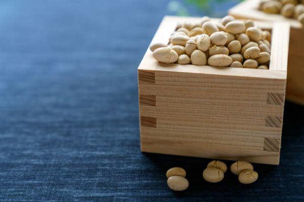 Que es setsubun no hi festival japones para despedir invierno semillas