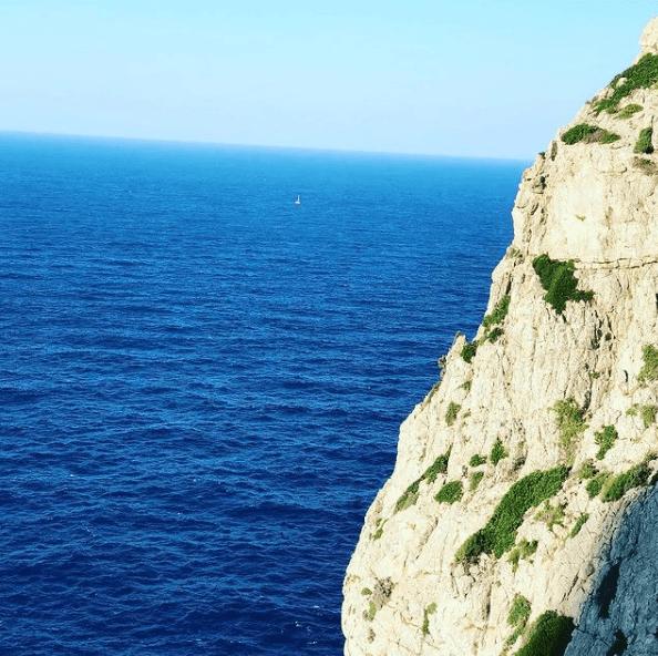 Animales que viven en el Mar Mediterráneo samaruc