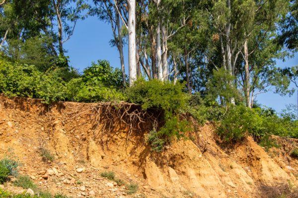 Erosion del suelo que es tipos causas consecuencias