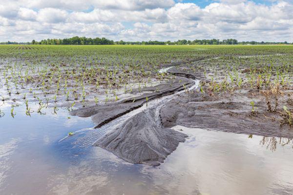 Erosion suelo causas consecuencias