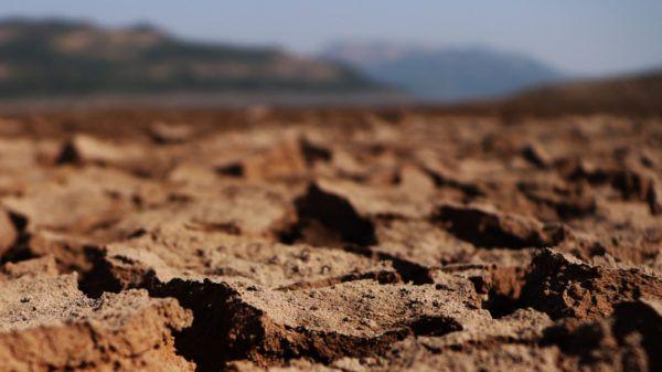 Erosion suelo es tipos causas consecuencias