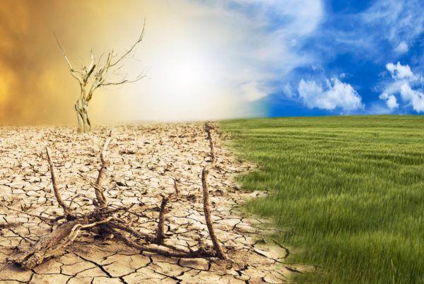 Erosion suelo que es tipos causas
