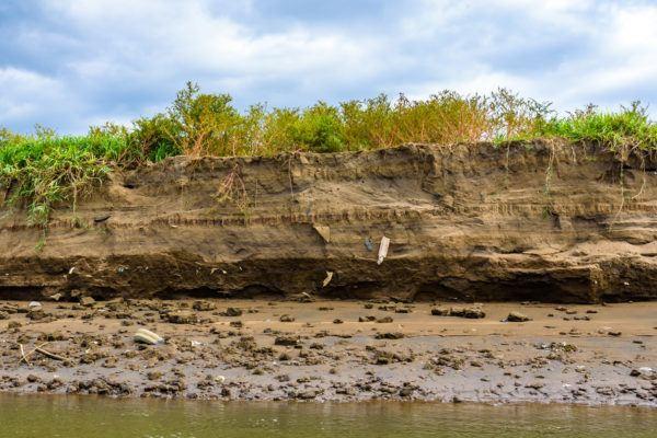Erosion suelo que tipos causas consecuencias