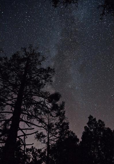 Perseidas 2022: Cómo, cuándo y dónde ver la lluvia de estrellas más intensa del año abrigo