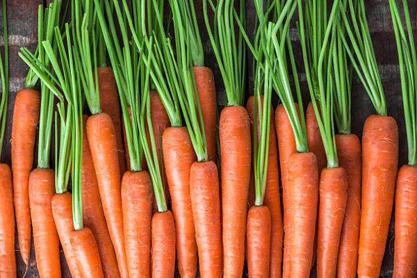 Que frutas y verduras comer en febrero calendario de temporada zanahorias
