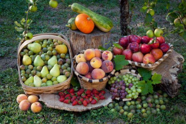 Que frutas y verduras comer en octubre calendario de temporada
