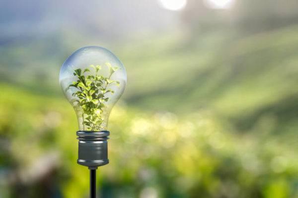 Como reciclar todos los tipos de bombillas