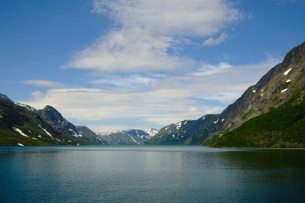 Tundra: Qué es, características, clima, tipos, fauna y flora agua