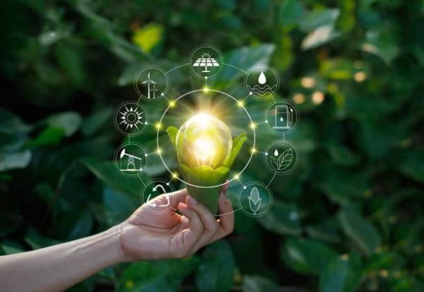 Dia mundial de la ecologia es cuando se celebra y como podemos celebrarlo