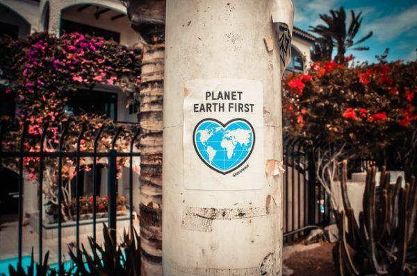 Día Mundial de la Ecología: qué es, cuándo se celebra y cómo podemos celebrarlo planeta