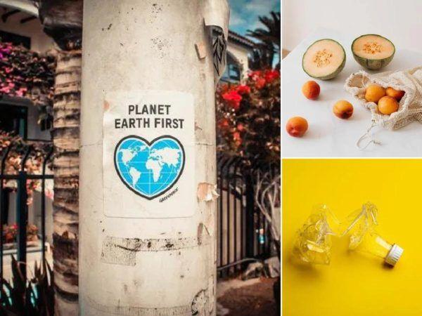 Día Mundial de la Ecología: qué es, cuándo se celebra y cómo podemos celebrarlo portada