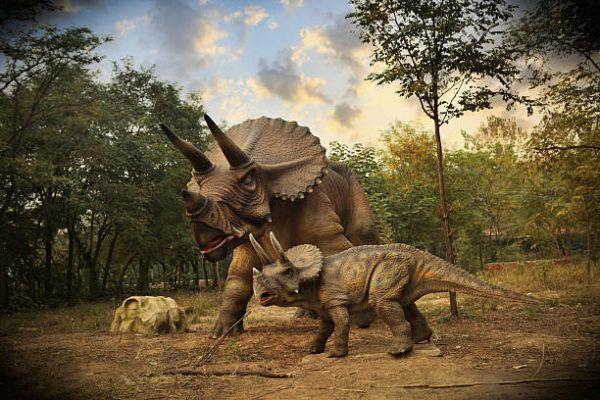 Dinosaurios como eran que tipos habia y por que se extingueron