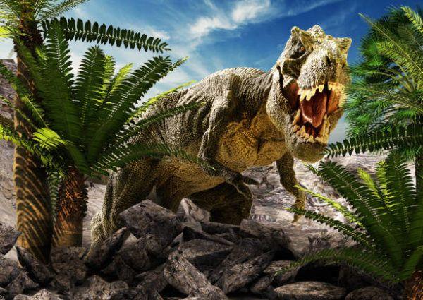 Dinosaurios que eran como eran que tipos habia extingueron