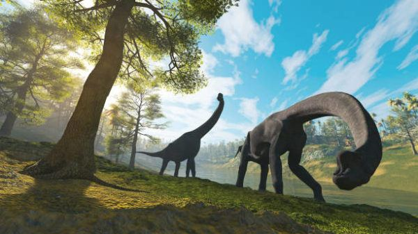 Dinosaurios que eran como eran que tipos habia por que extingueron