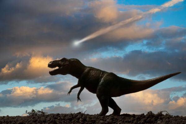 Dinosaurios que eran que tipos habia y por que se extingueron